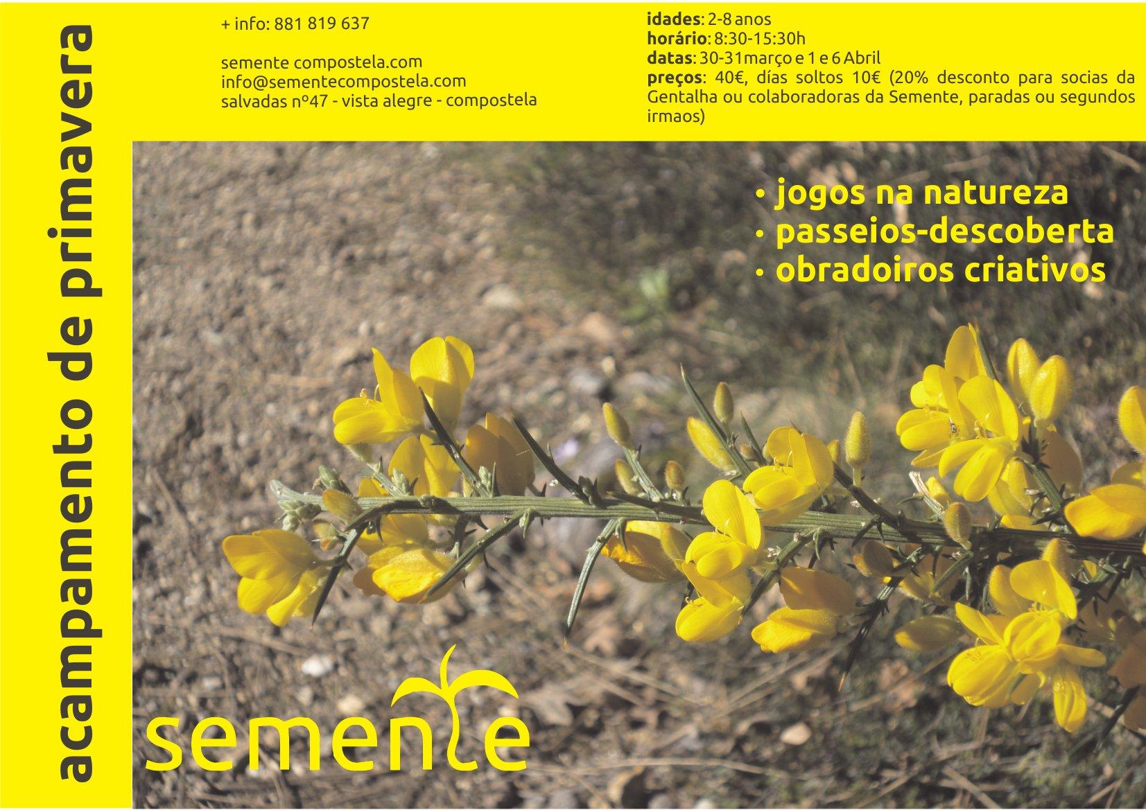 cartaz acampamento primavera